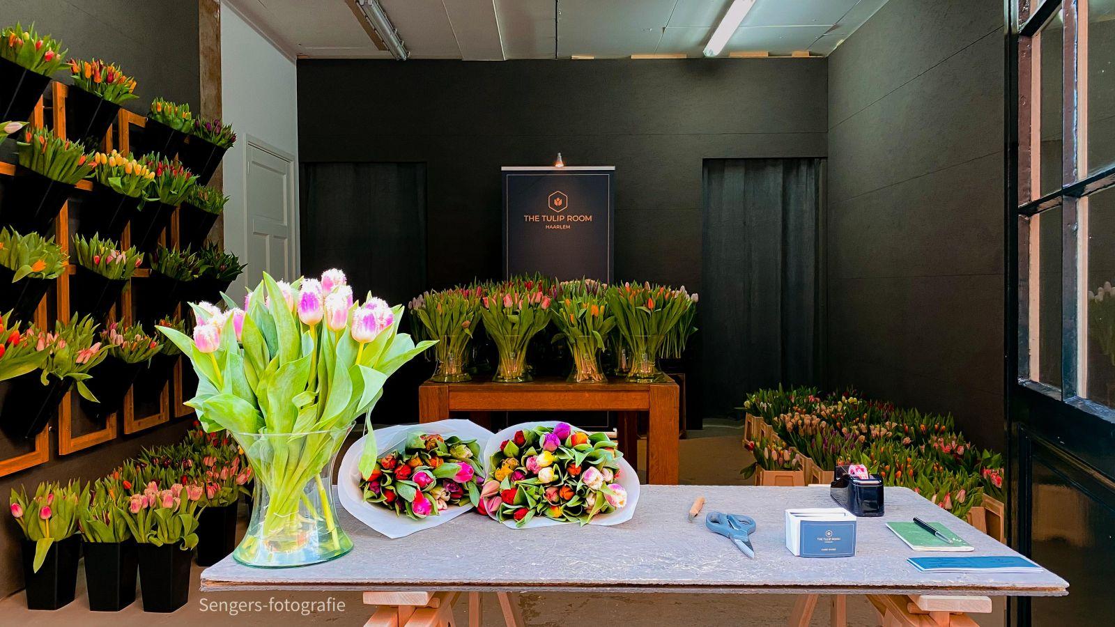Vooraanzicht Tuliproom